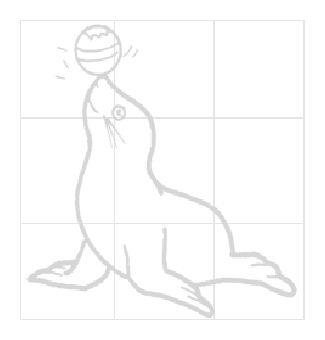 海豹图片_学习简笔画_少儿图库