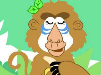 when a baboons not