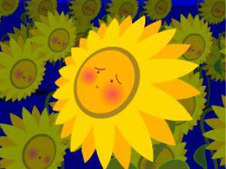 第六话:贪睡的向日葵