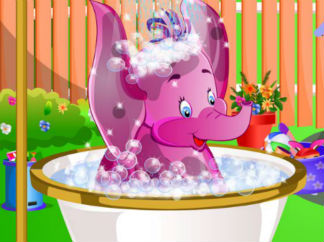 给小象洗澡