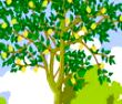 全球仅此一一种的树--杜仲