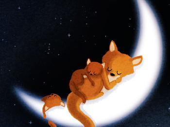 [小狐狸的枪和炮]小狐狸的摇篮