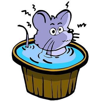 [玛丽和小老鼠的秘密]小老鼠玛丽的海龟梦