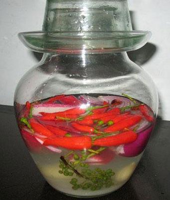 教泡菜新手如何做代代相传的老泡菜水