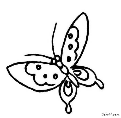 蝴蝶采蜜简笔画