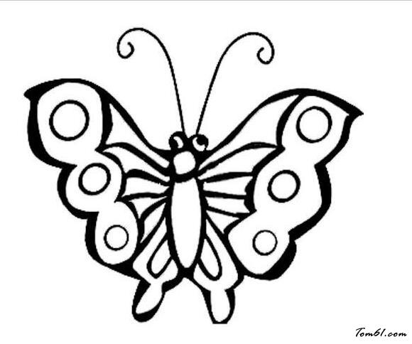 蝴蝶5图片_简笔画图片_少儿图库_中国儿童资源网