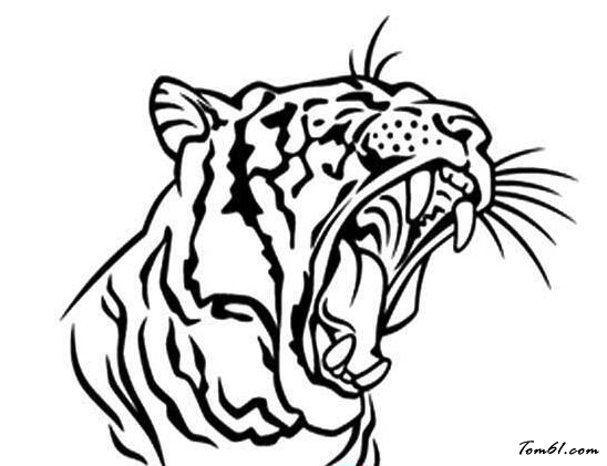老虎5图片_简笔画图片_少儿图库_中国儿童资源网