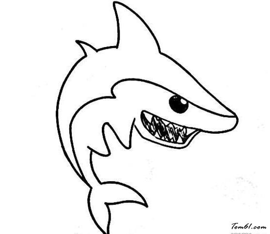 鲨鱼素描画图片步骤
