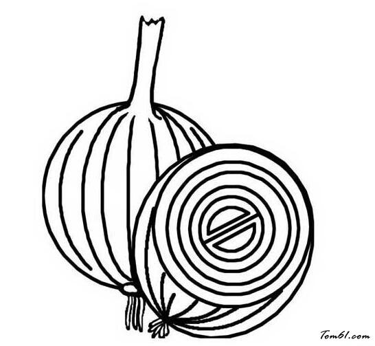 洋葱的简笔画步骤图片