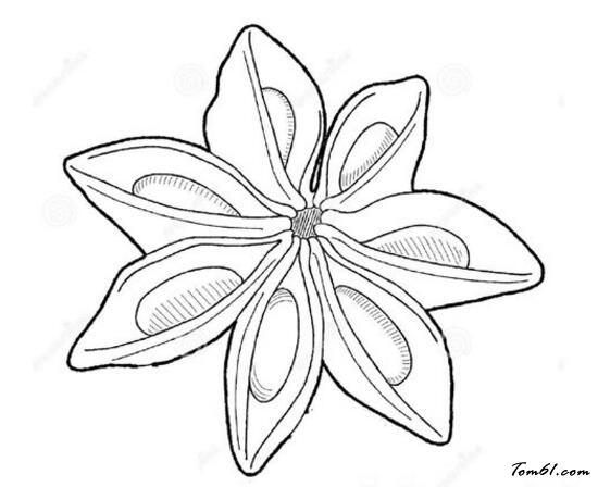 简笔画 设计 矢量 矢量图 手绘 素材 线稿 550_448