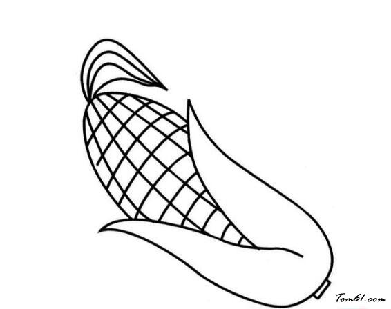 玉米棒简笔画图片大全
