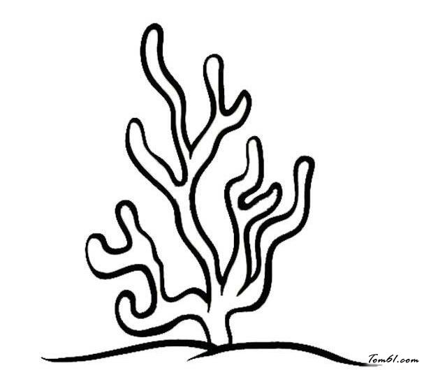 珊瑚矢量图素材