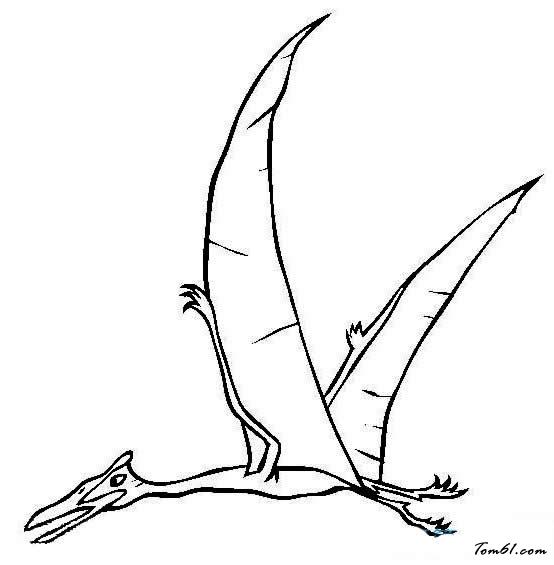 翼龙简笔画图片(步骤)