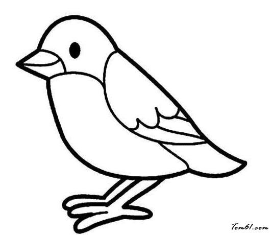 站立的小鳥