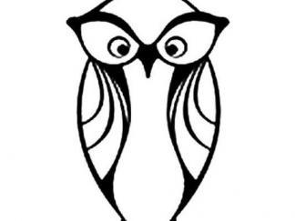 可爱猫头鹰15