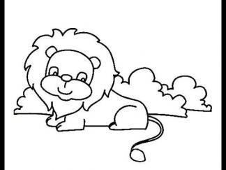 小狮子21