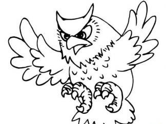 可爱猫头鹰4