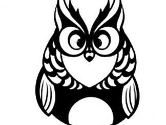 可爱猫头鹰10