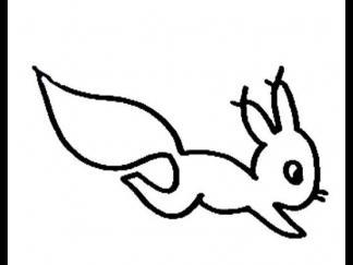 松鼠158