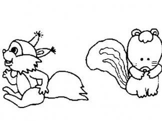 松鼠1519
