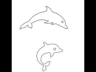 跳跃的海豚8