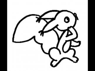 松鼠1515