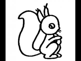 松鼠159