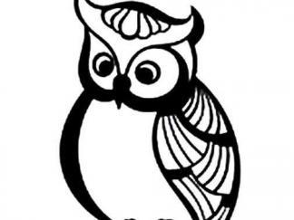 可爱猫头鹰12