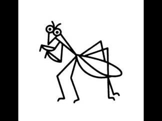 螳螂411