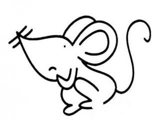 老鼠162