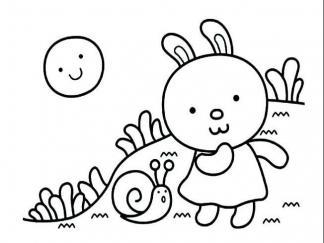 小兔子64