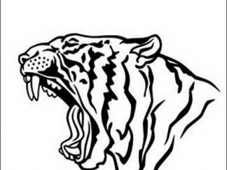 老虎头像2