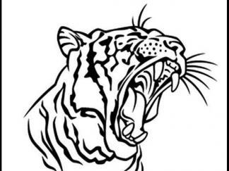 老虎头像1