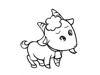 小山羊21