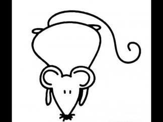 老鼠161