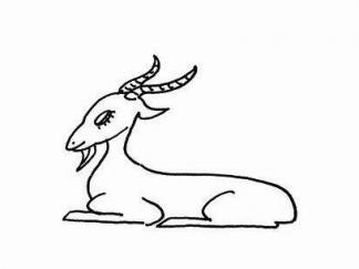 小山羊26