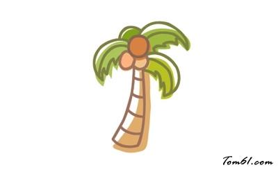 椰子树2图片