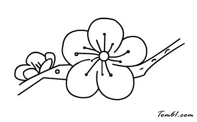 梅花简笔画步骤 手绘
