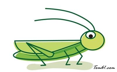 蝗虫图片_学习简笔画_少儿图库_中国儿童资源网