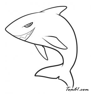 鲨鱼赛车简笔画步骤