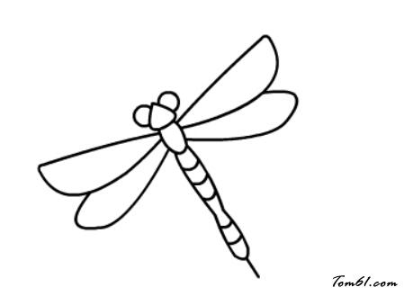 蜻蜓7图片_学习简笔画_少儿图库_中国儿童资源网