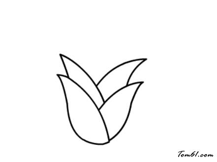 竹笋图片_学习简笔画_少儿图库_中国儿童资源网