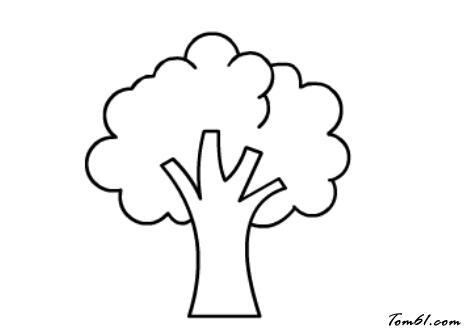 大树图片_学习简笔画_少儿图库_中国儿童资源网