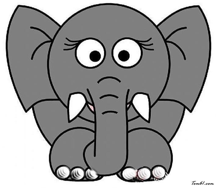 大象10图片