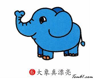 大象13图片