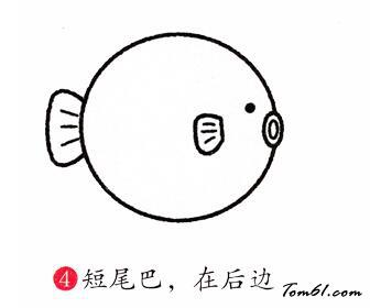 河豚的简笔画步骤