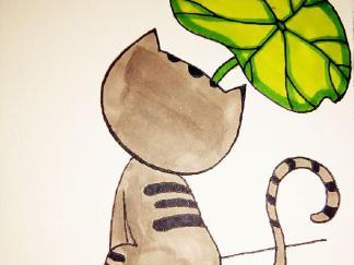 猫咪的背影
