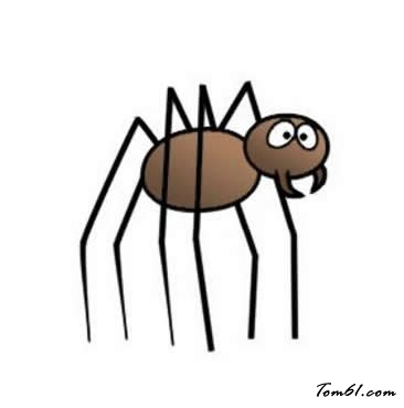卡通蜘蛛6图片