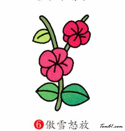 梅花6图片_学习简笔画_少儿图库_中国儿童资源网