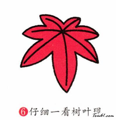 枫叶图案设计变形